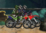 Motocross Challenge en For�t
