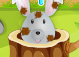 Lapin Content Soins